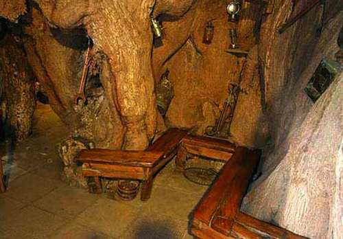 Interior of the pub in a baobab tree. Showing there is actual seating inside.